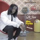 Afro Punta 2 Diversity von Lil June Afro Punta