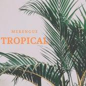 Merengue Tropical de El Zafiro Carlos Manuel, Johnny Ventura, La Banda Gorda, Manny Manuel, Toño Rosario
