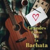 Grandes Exitos de la Bachata de Anthony Santos, El Chaval de la Bachata, Elvis Martinez, Raulin Rodriguez, Zacarias Ferreira