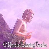 43 Muscle Relaxing Tracks by Classical Study Music (1)