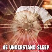 45 Understand Sle - EP von Rockabye Lullaby