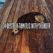 34 Destroy Tinnitus with Thunder by Rain Sounds and White Noise