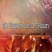 28 Essence of Rain by Rain Sounds and White Noise