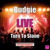 Turn To Stone (Live) de Budgie