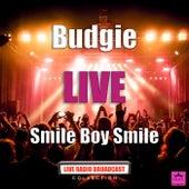 Smile Boy Smile (Live) de Budgie