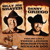 Feeling Like a Three-Legged BorderTown Mexican Dog by Billy Joe Shaver