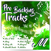 Pro Backing Tracks M Vol.16 by Pop Music Workshop