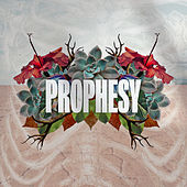 Prophesy (Live) by Influence Music