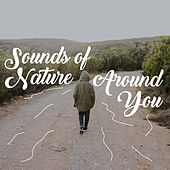 Sounds of Nature Around You – New Age Music to Relax de Sounds Of Nature