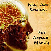 New Age Sounds For Active Minds by Various Artists
