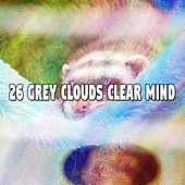 26 Grey Clouds Clear Mind by Rain Sounds and White Noise