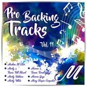 Pro Backing Tracks M Vol.11 by Pop Music Workshop