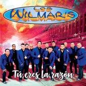 Tú Eres La Razón by Wilmar's