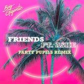 Friends (Party Pupils Remix) by Big Gigantic