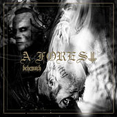 A Forest by Behemoth
