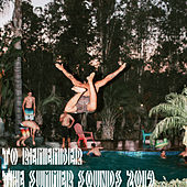 To remember the sounds of summer 2019 de Various Artists