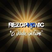 Ci vuole un fiore by Rezophonic