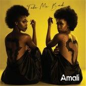 Take Me Back by Amali