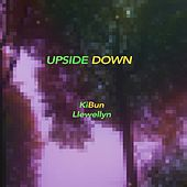 Upside Down by Llewellyn