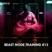 Beast Mode Training, Vol. 13 de Hot Q