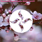 Sensoria Selections 2020, Vol. 01 by Various Artists