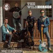 What I've Been Missing de Wild Horses