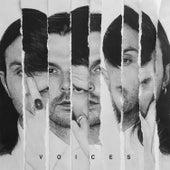 Voices von Hurts