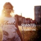 Bez ciebie (DJ Sequence Remix) de Shantel