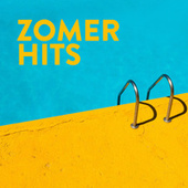 Zomer Hits de Various Artists