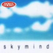 Sky Mind di Radiant Children