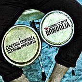 101 Things To Do In Bongolia by Various Artists
