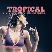 Tropical Reggaeton Rhythms van Various Artists