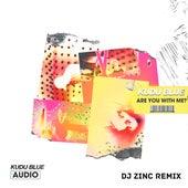Are You with Me? (DJ Zinc Remix) by Kudu Blue