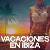 Vacaciones en Ibiza de Various Artists