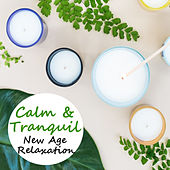 Calm & Tranquil New Age Relaxation by Various Artists