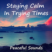 Staying Calm In Trying Times Peaceful Music by Various Artists