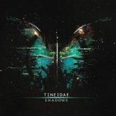Shadows de Tineidae