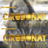 Wait A Minute de Cirodonay