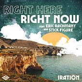 Right Here Right Now (feat. Eric Rachmany and Stick Figure) de Iration
