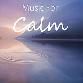 Music For Calm by Various Artists