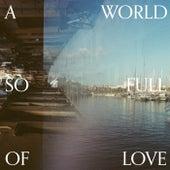 A World So Full Of Love de The Boyscouts