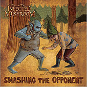 Smashing the Opponent (Radio Mix) de Infected Mushroom