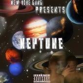 Neptune van Slick