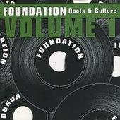 Foundation - Roots & Culture, Vol. 1 de Various Artists