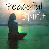 Peaceful Spirit by Various Artists