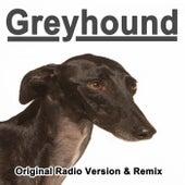 Greyhound (Original Radio Version & Remix) di Swedish House Generation
