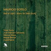 Mauricio Sotelo: Wall of Light – Music for Sean Scully by Various Artists