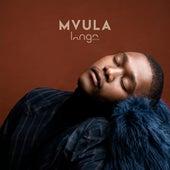 Mvula von Langa Mavuso