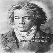 A Selection by Ludwig Beethoven and Alfred Brendel de Yehudi Menuhin