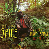 Valley of Jehoshaphat (Red Hot) von Richie Spice